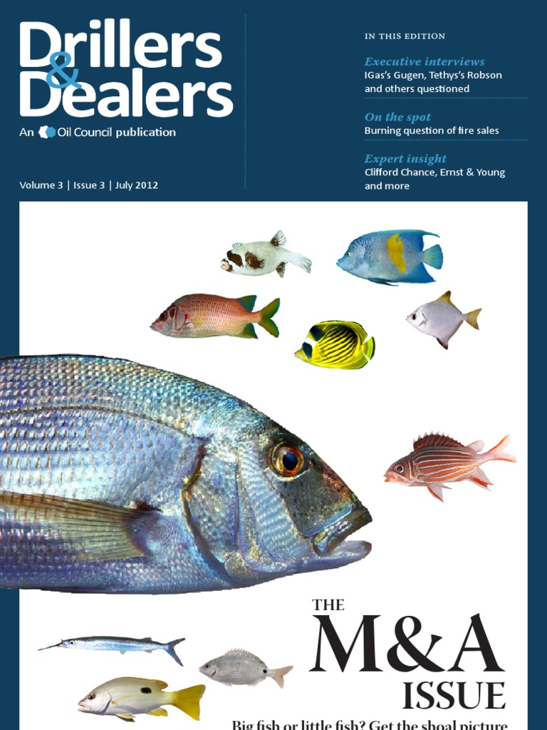 Drillers and Dealers June 2012   Private Equity   Investing