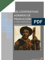 Las Cooperativas Agrarias de Producción