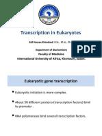Transcription in Eukaryotic Cells