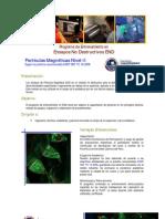 Particulas magnéticas PUC