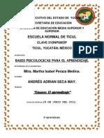 Trabajo Semestral_ Bases Psicologicas.