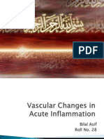 Vascular Changes in Acute Inflammation Bilal