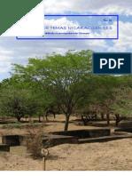 Revista de Temas Nicaragüenses no 14 junio 2009