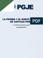 La Prueba Penal