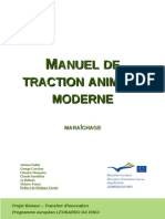 Manuel Detraction Animal e Moderne