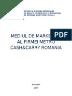Mediul de Marketing Al Firmei Metro Cash&Carry Romania