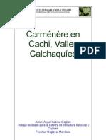 Carménère en  Cachi