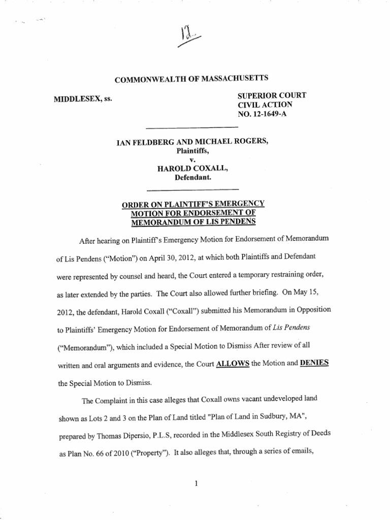 Feldberg et al v coxall order on plaintiffs emergency motion coxall order on plaintiffs emergency motion for endorsement of memorandum of lis pendens 01717406 biocorpaavc Choice Image
