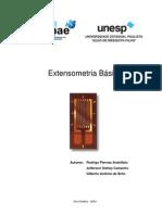 Extensometria Basica