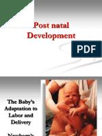 4+ +Postnatal+Development