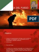 La Teoria Del Fuego