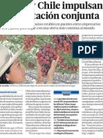 Peru y Chile hacia exportacion conjunta
