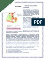 FISIOLOGÍA DE LA LACTANCIA
