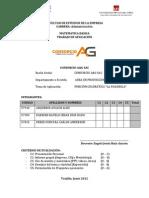 Proyecto Final Consorcio a&G