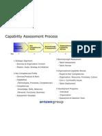 Capability Assessment