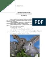 Program de Dezvoltare a Cresterii Iepurilor de Casa in Romania