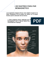 Par Biomagnetico