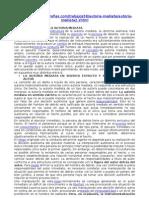 Estructura de La Autoria Mediata