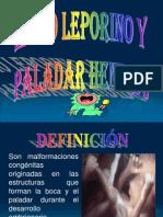 Labio Leporino y Paladar Hendido