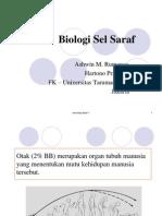 Biologi Susunan Sel Saraf 2008
