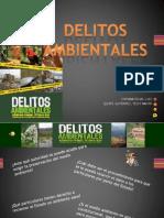 DELITOS_AMBIENTALES_290512