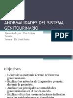 Anormalidades Del Sistema Genitourinario