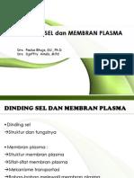 Bab 4 Dinding Sel Dan Membran Plasma 2008
