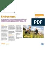 Environment - exhibition board