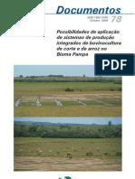 possibilidades de aplicação de sistemas de produção integrados de bovinocultura de corte e de arroz no bioma pampa