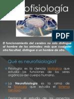 Presentación neurofisiologia
