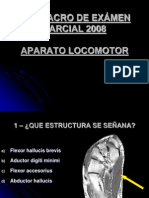 Parcial_completo Sin Rta