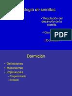 dormicion_2011