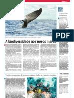 A biodiversidade nos nosos mares