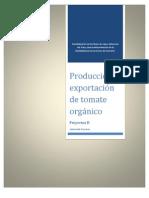Analisis Financiero Tomate Organico
