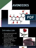 flavonoides.estefaniatorrejon
