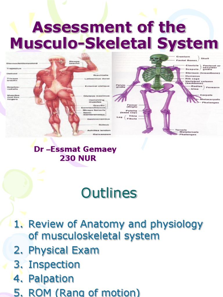 Assessment of the Musclo-Skletal System | Anatomical Terms Of Motion ...
