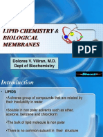 New Lipid Powerpoint