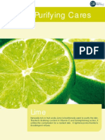 04. Purifying Lime
