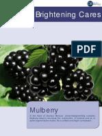 09. Brightening Mulberry