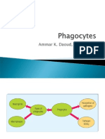 (19) Phagocytes