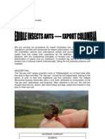 Edible Insects Ants Export Colombia