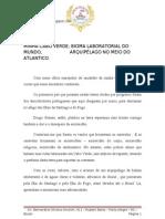 Sinopse 2013 - União da Vila do IAPI