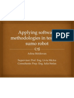 Applying Software Methodologies in Testing a Sumo Robot