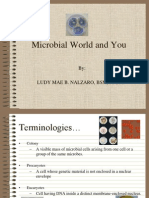 Chapter 1 Part 1-Microbial World and You
