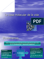 La Base Molecular de La Vida 1CLASE 3
