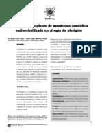 Eficacia Del Trasplante de Membrana Amniotica en El Pterigion