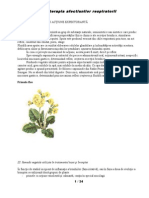 Fitoterapia Afectiunilor Respiratorii