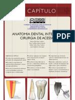 Anatomia Interna Dental ProApice