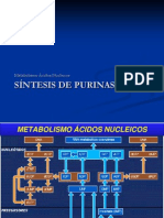 1-Metabolismodepurinas
