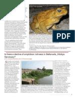 Amphibians diversity of Bellanwila-Attidiiya (Sri Lanka)